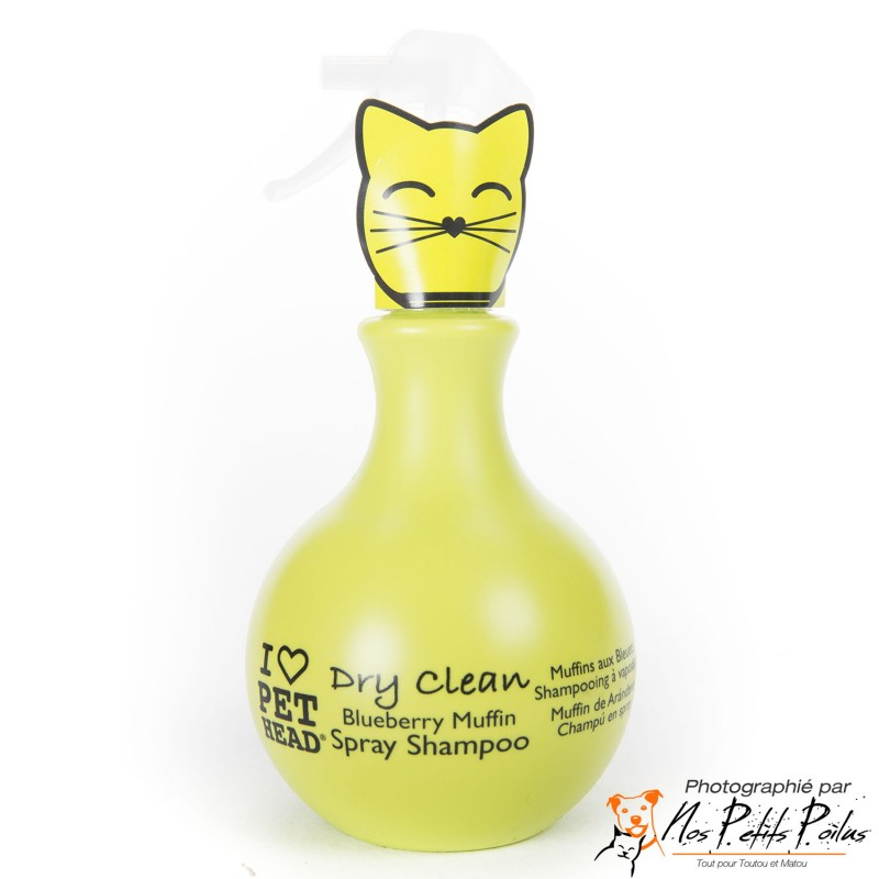 Dry Clean Chat Pet Head