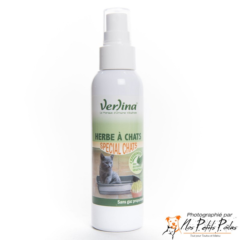 Spray d'herbe à chat Verlina