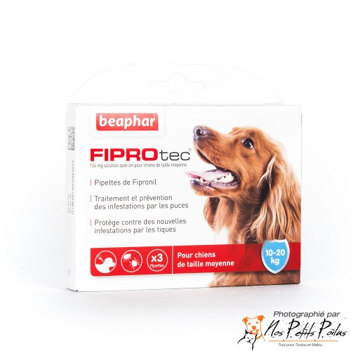 Pipettes Fiprotec Béaphar