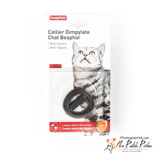 Collier Dympilate chat Béaphar