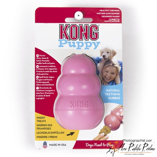 Puppy Kong Classic rose