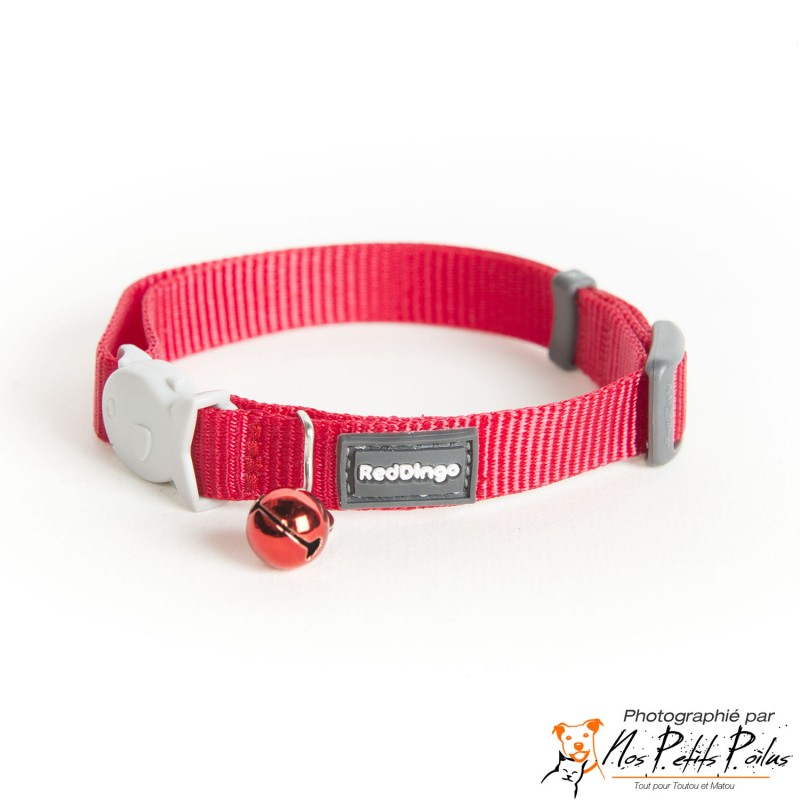 Collier rouge Red Dingo