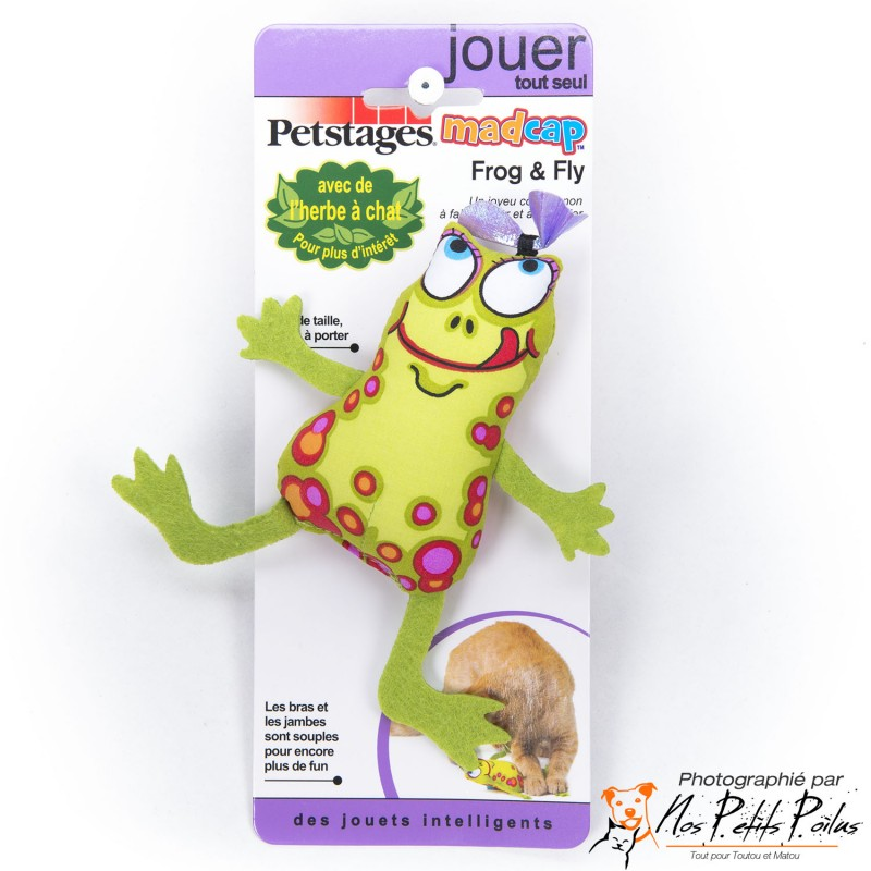 Frog and Fly Petstage