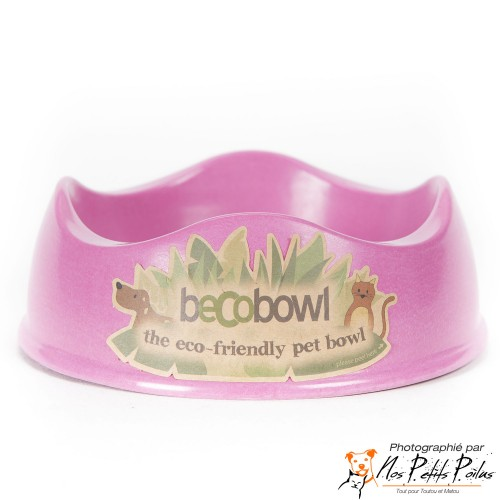 Beco Bowl rose